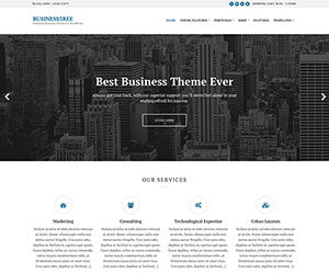 20 Best Small Business Wordpress Themes 2020 Athemes