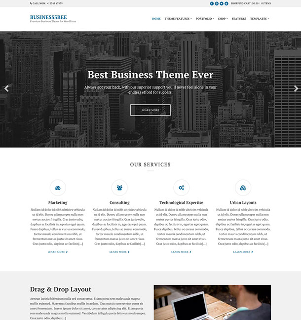 BUSINESS3REE-Business-Theme
