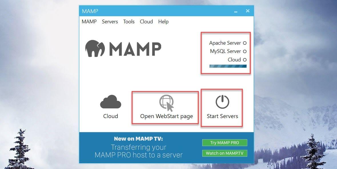 MAMP Start Servers