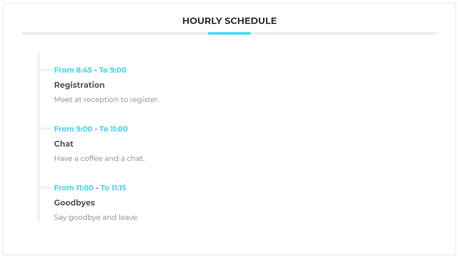 Hourly Schedule