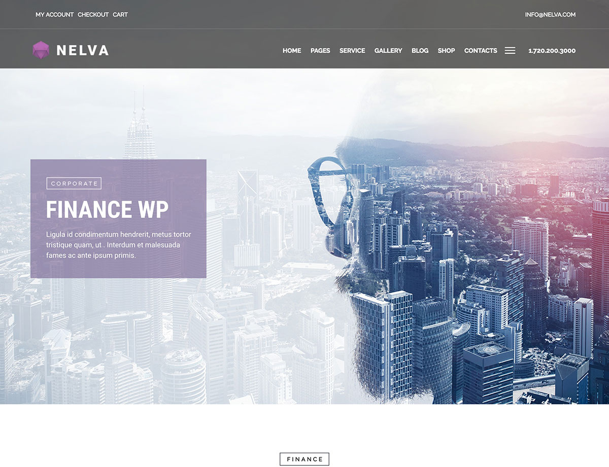 nelva-finance-theme