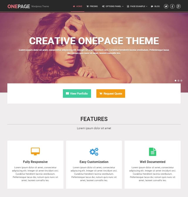 OnePage Theme Demo