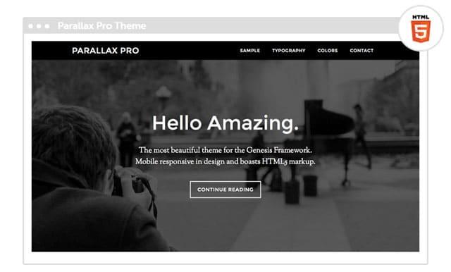 Parallax Pro Child Theme