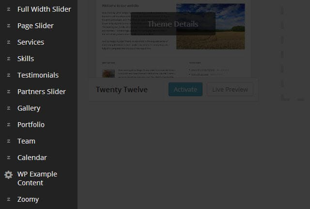 Telsa Themes Theme Options