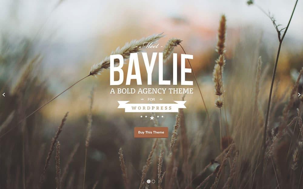 baylie-agency-theme