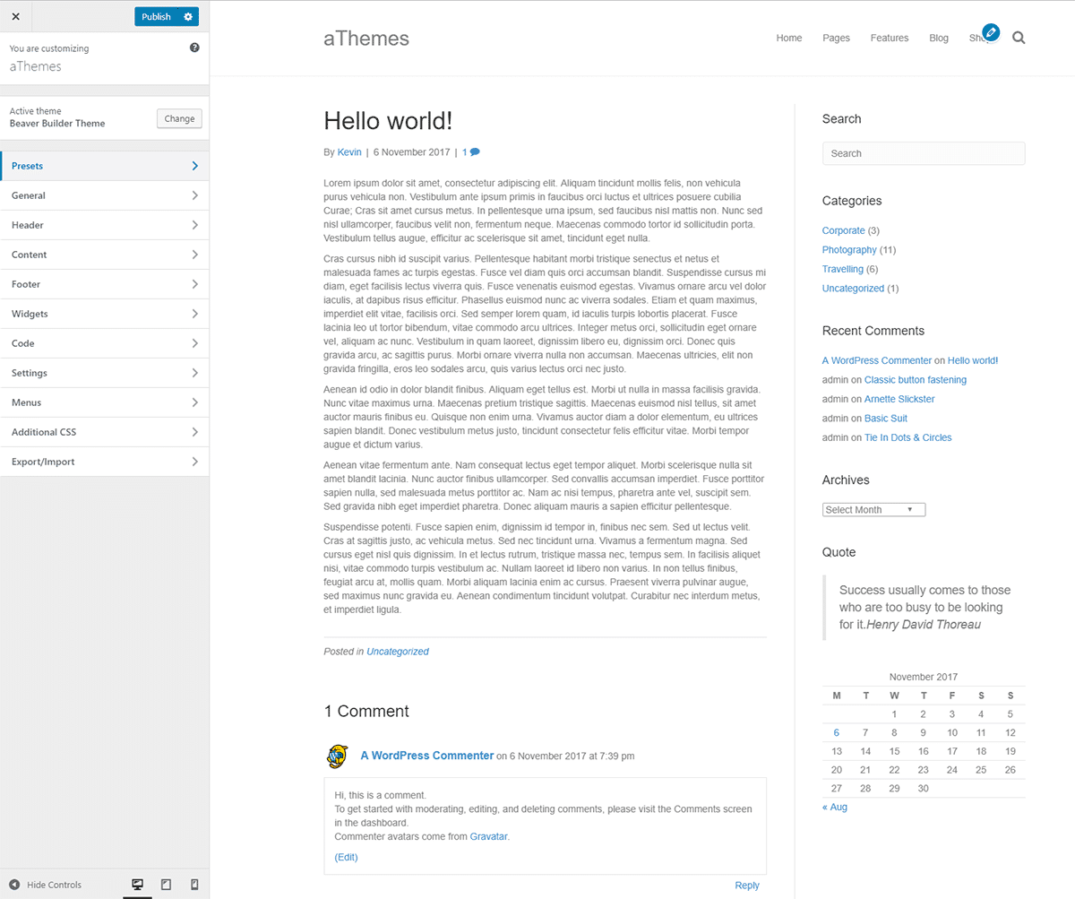 WordPress Theme Customiser