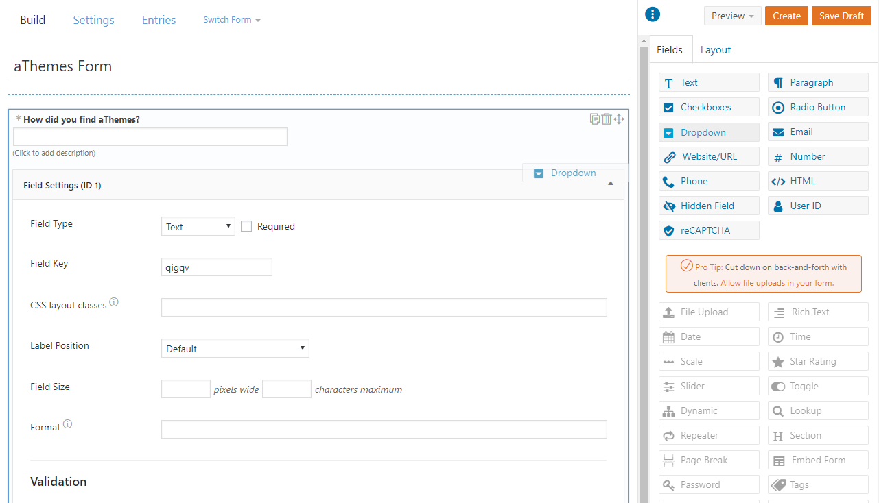 Formidable Forms interface