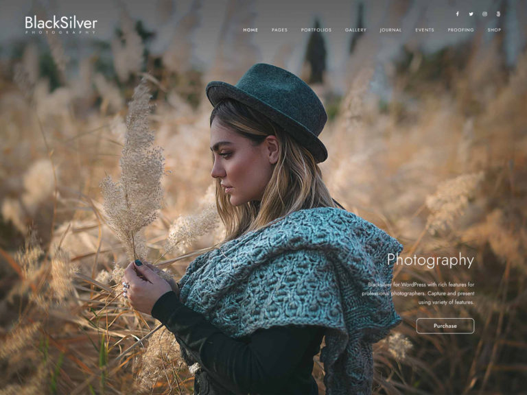 25 Best Full Screen Wordpress Themes 2020 Athemes