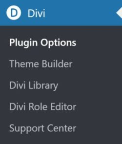 Divi Builder Admin Menu