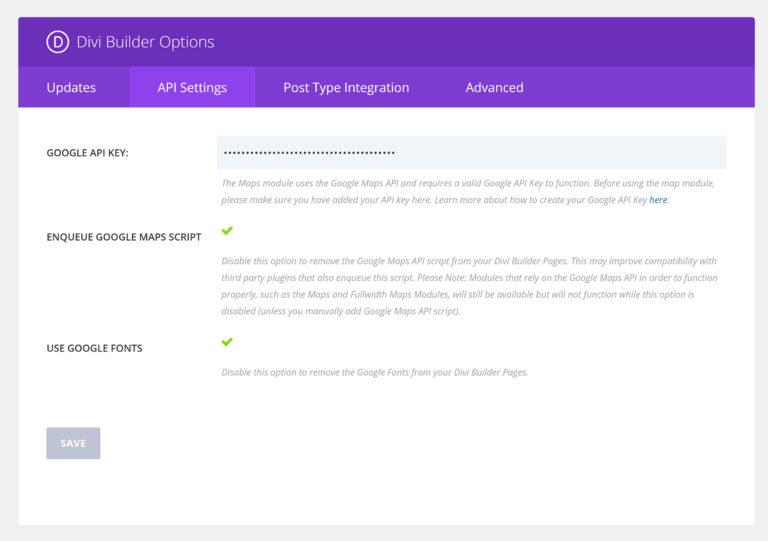 Divi Builder Options - API Settings