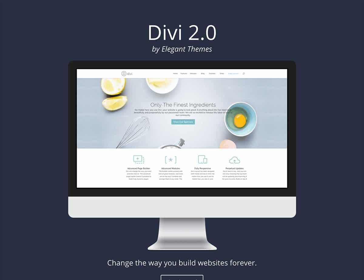 divi-landing-page