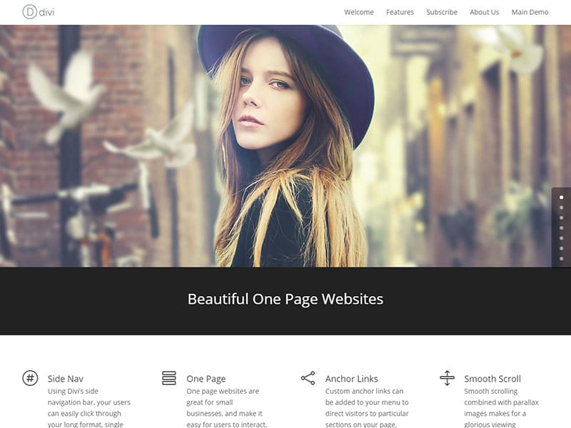 divi-one-page