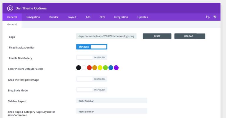 Divi Theme Options - Design