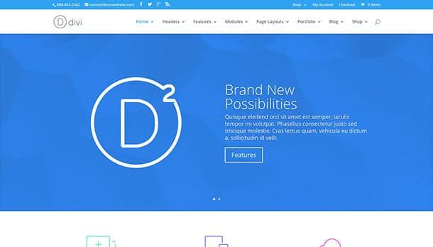 divi-wordpress-theme-company