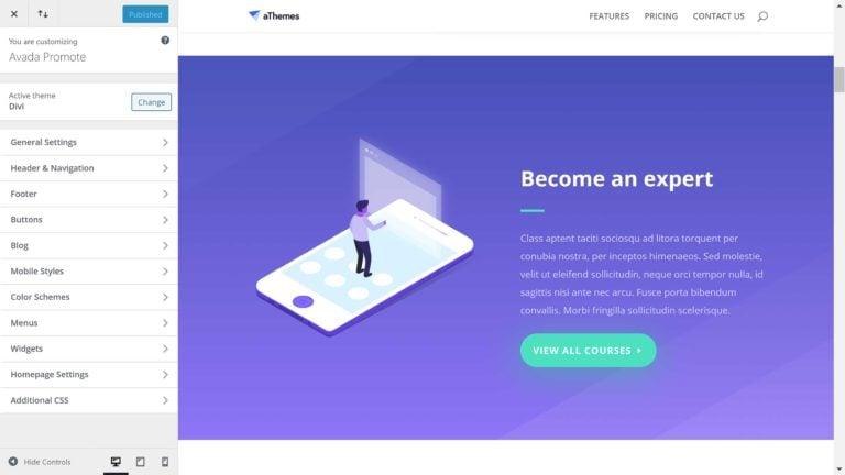 WordPress Theme Customiser in Divi