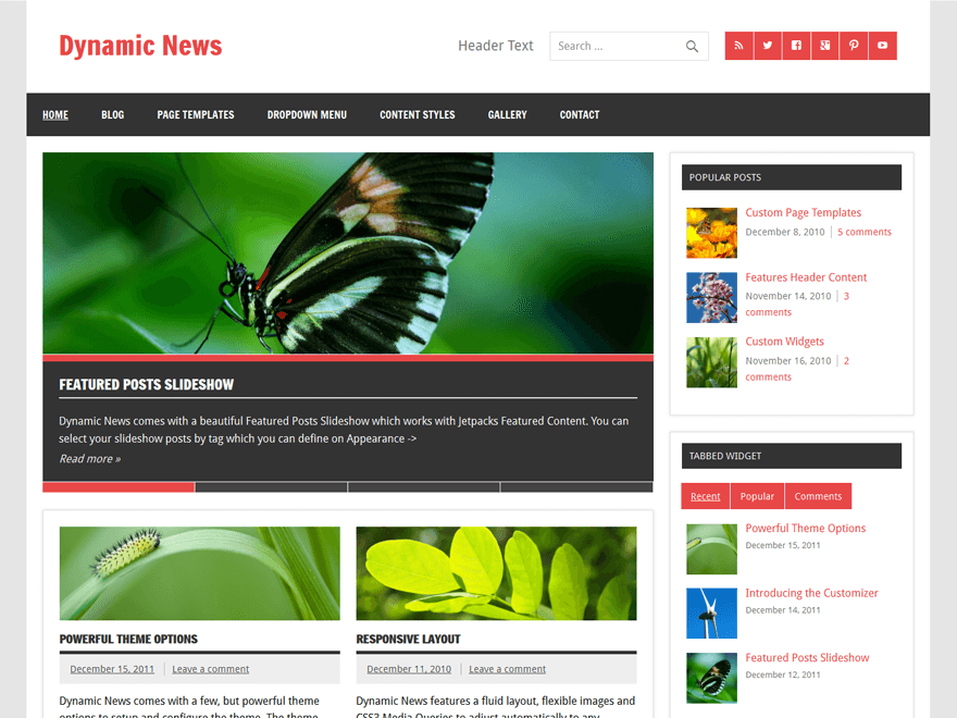 dynamic news lite theme