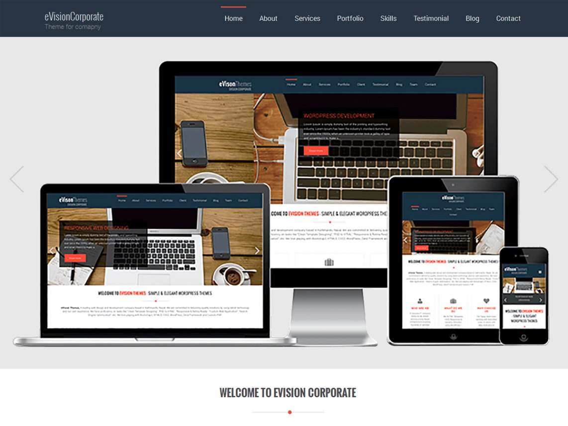 evision corporate theme
