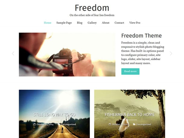 freedom-theme