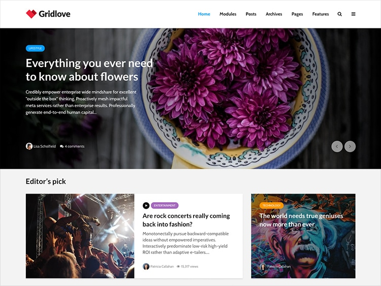 Theme gridlove wordpress