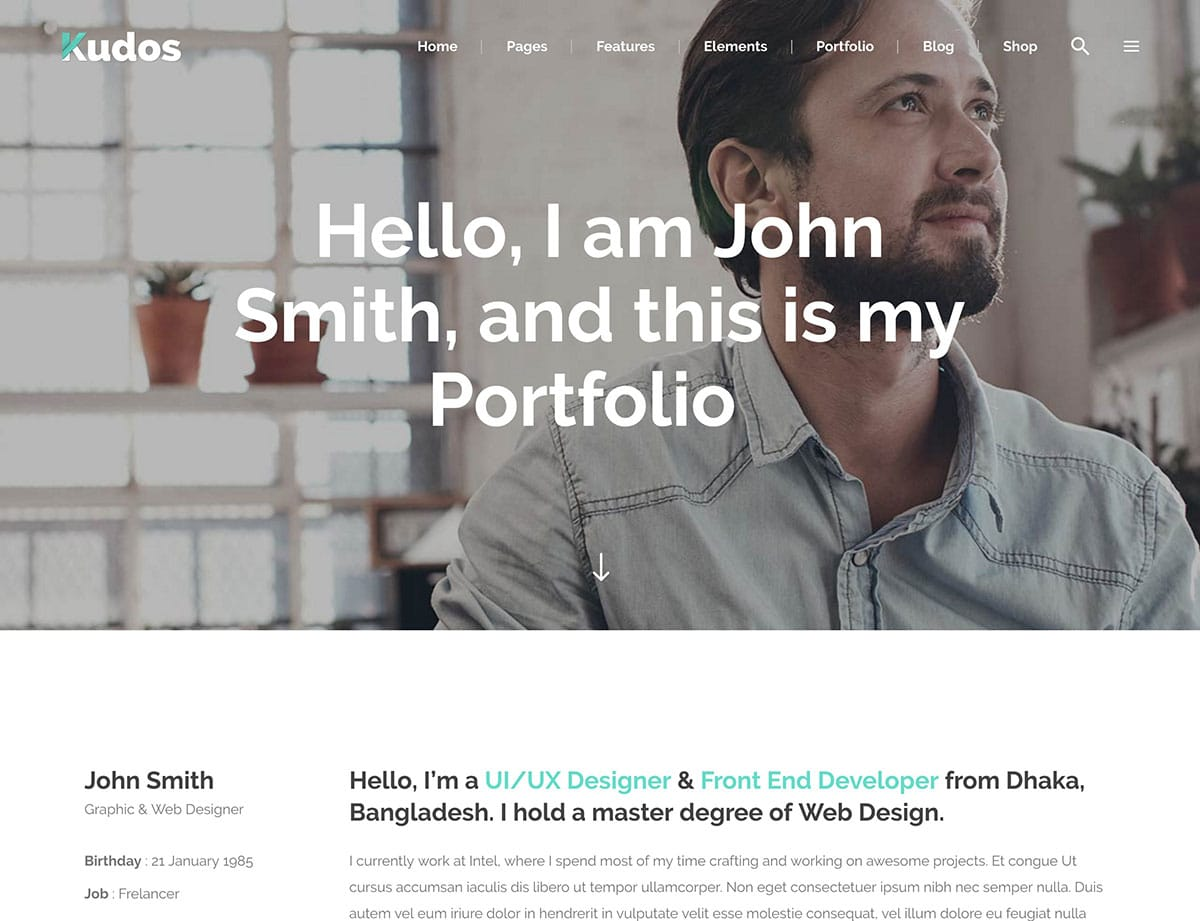 kudos-freelancer-theme