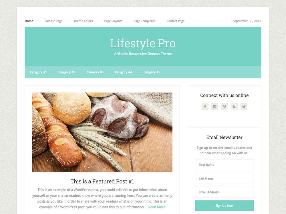 lifestyle-pro-theme