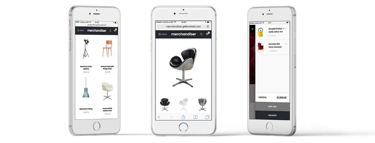 Merchandiser Mobile Design