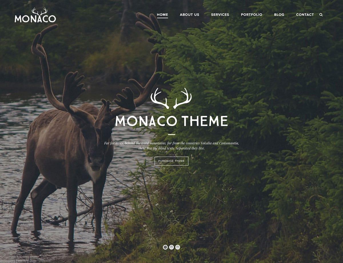 monaco-theme