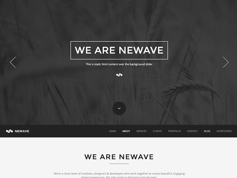 newave-one-page-parallax-theme