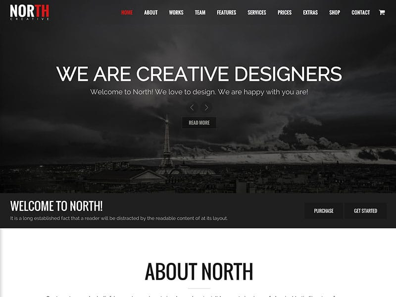north-one-page-parallax-theme