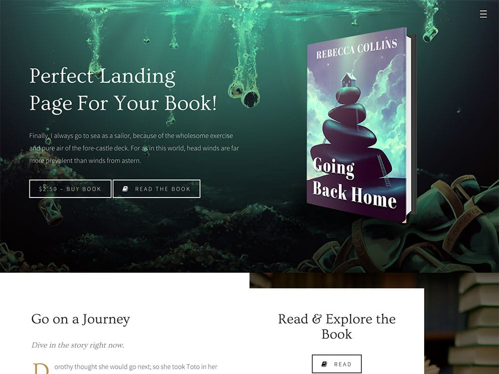 10 best wordpress themes for selling books 2018 athemes novela has been created to help you build a stylish landing page or promotional website for your book fandeluxe Images