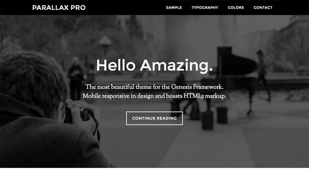 parallax-pro-wordpress-theme