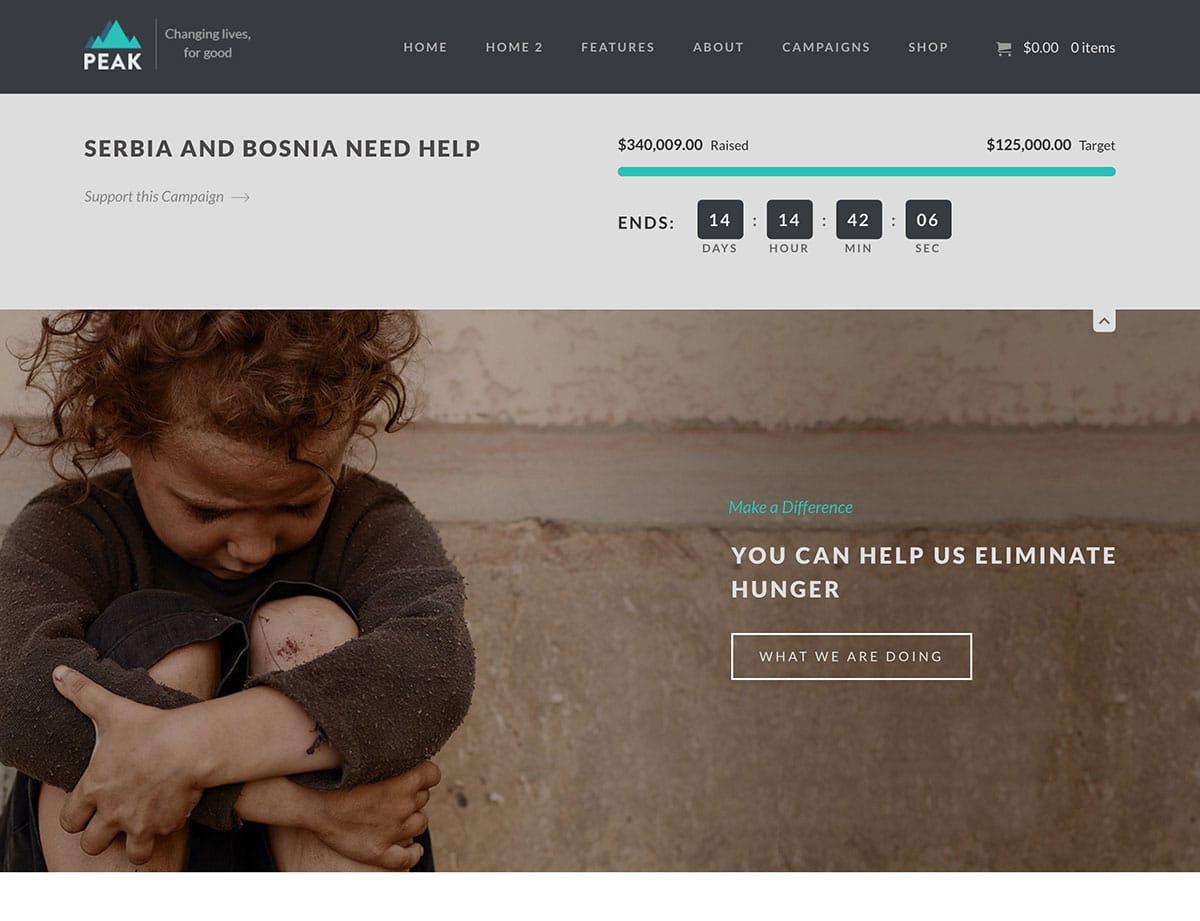 peak-charity-wordpress-theme