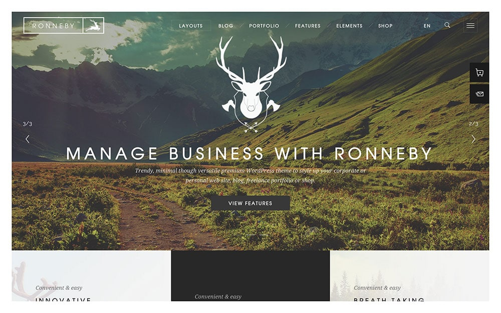 ronneby-wordpress-theme