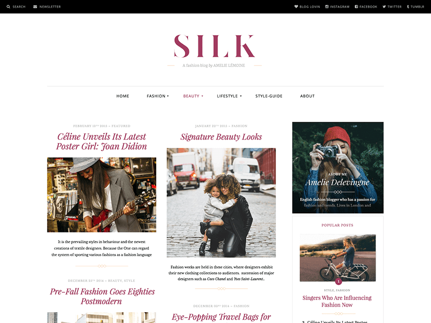 silk lite magazine style theme