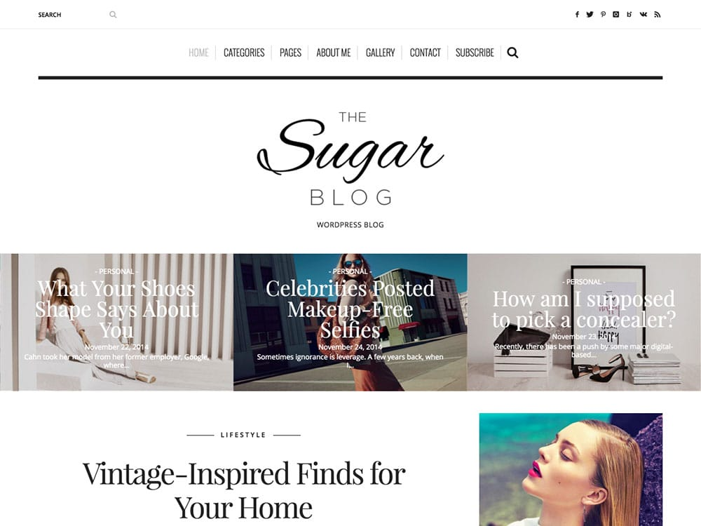 theme wordpress blog