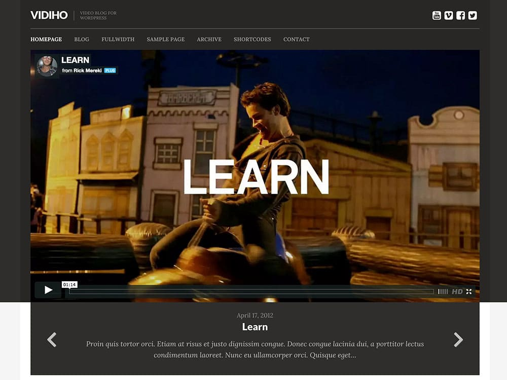 vidiho-video-blog-theme