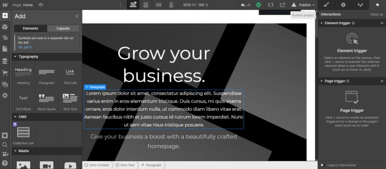 Webflow style