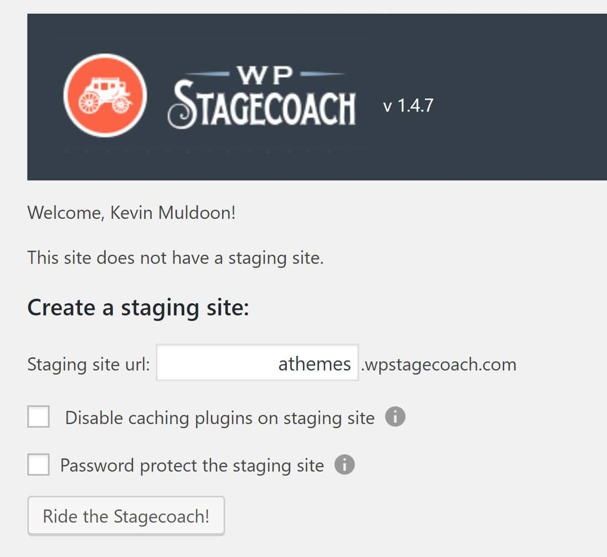 Create a Staging Site